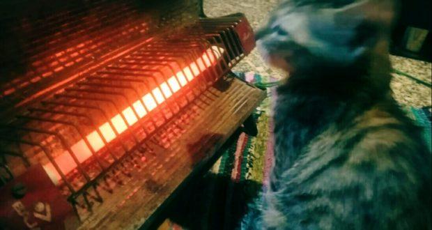 ठंड में ठिठुरता उत्तराखण्ड,धूप के बावजूद सर्दी बढ़ रही