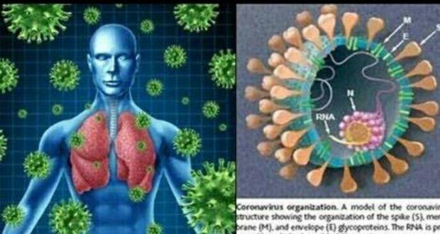 कोरोना वायरस से घबराएं नही बल्कि सतर्क रहें… निदेशक एम्स रविकान्त