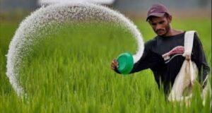 मुख्य सचिव ओम प्रकाश ने मुख्यमंत्री राज्य कृषि विकास योजना में कृषि एवं उससे सम्बद्ध योजनाओं को स्वीकृत प्रदान की।