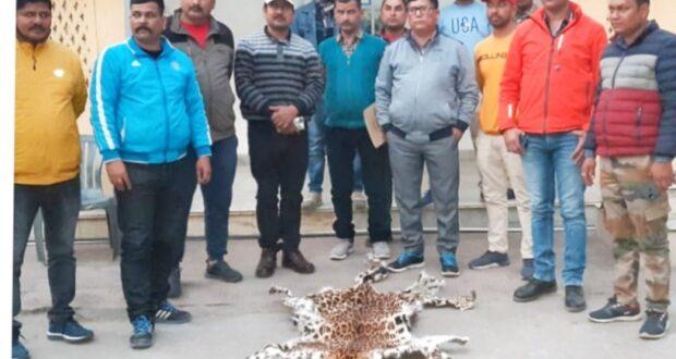 कुमाऊँ STF टीम ने वन्य जीव तस्कर लैपर्ड की खाल के साथ किया अरेस्ट