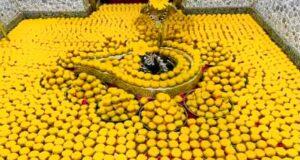 शिवभक्त ने लगाया 300 किलो लड्डू का भोग, पौराणिक मंदिर में मनोकामना हुई पूरी